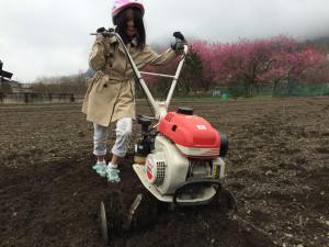 武州中川の畑を耕す
